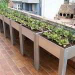 huerto balcones