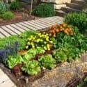 manuales jardineria y huerto organico