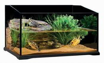 terrario acuario para tortugas