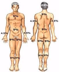 porcentaje quemaduras corporales