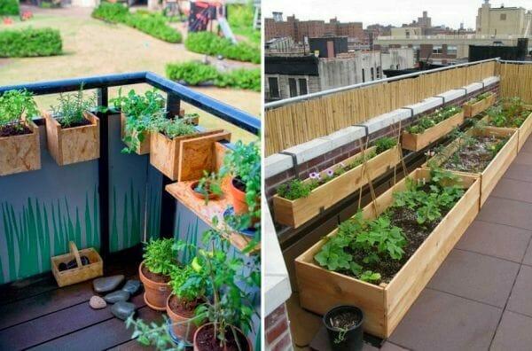 Manuales de huertos urbanos en pdf - Invernadero casero terraza ...